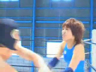 Japanese Mixed Wrestling